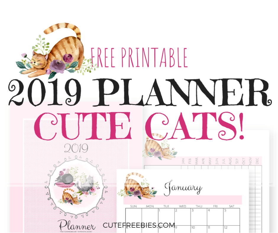 photograph relating to Printable Cats identified as Lovely Cats 2019 Planner Printable! - Lovely Freebies For By yourself